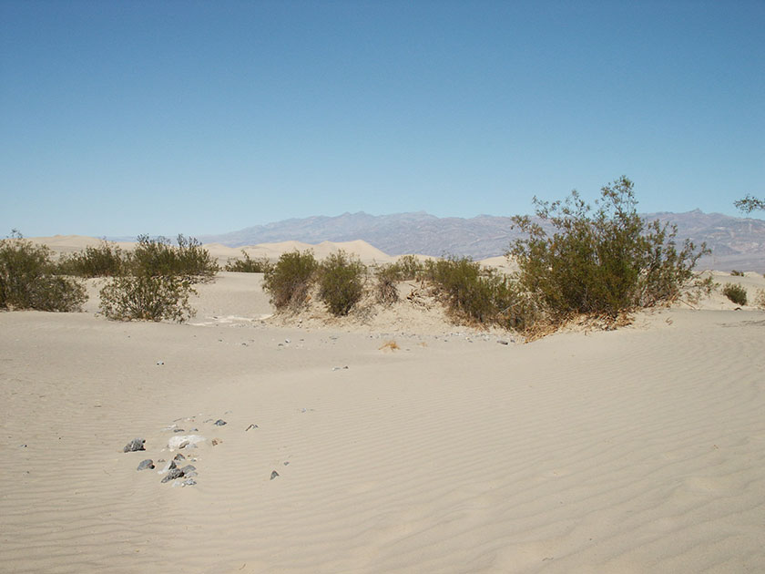 Die Sand Dunes im Death Valley