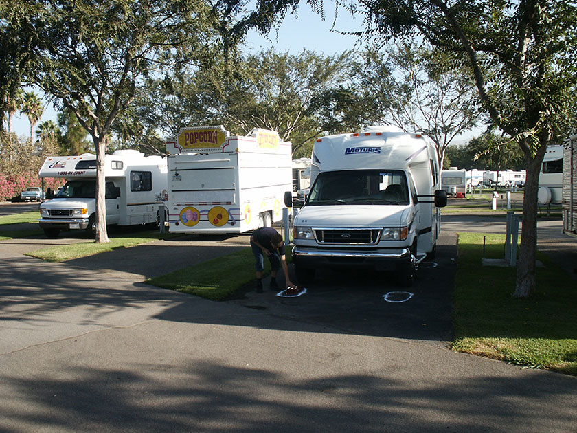 Ameisenschutz auf dem Campingplatz