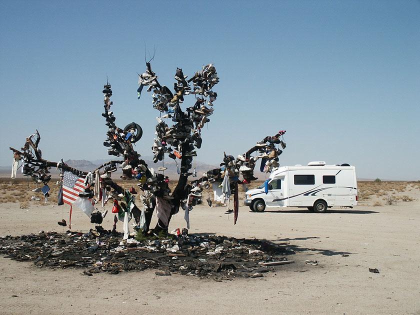 Der Schuhbaum