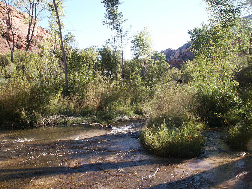 Weg zu den Calf Creek Lower Falls