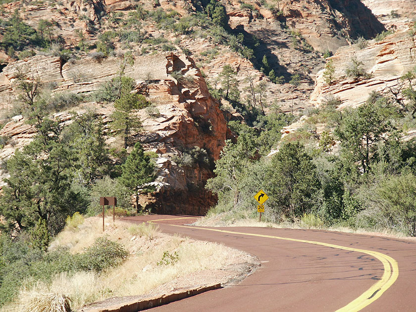 Typisch die roten Straßen im Zion National Park