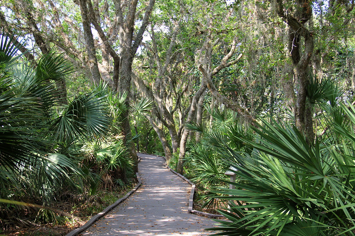 Meritt Island National Wildlife Refuge