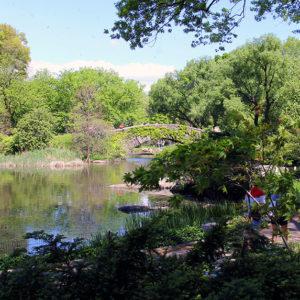 Der Central Park