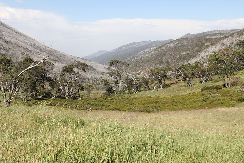 Kosciuszku National Park