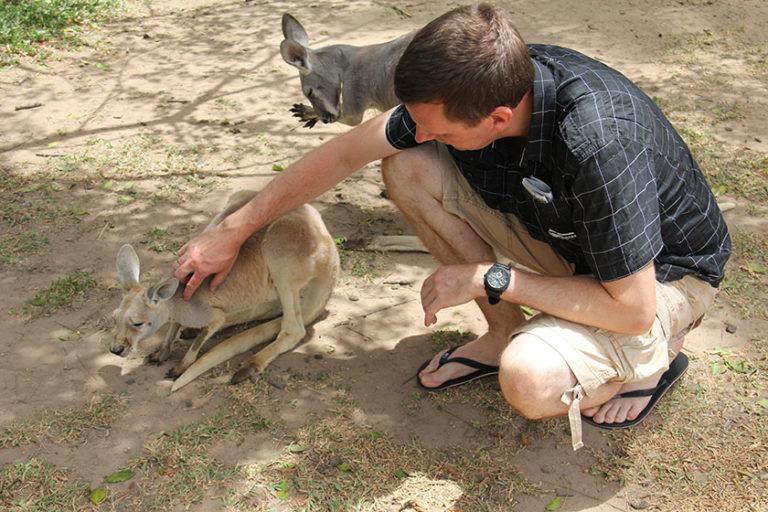 Kängurus sind sehr weich