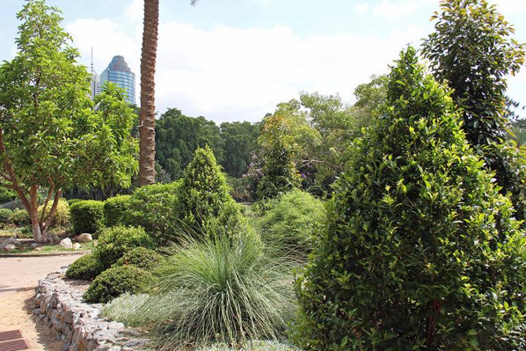 Brisbanes botanischer Garten