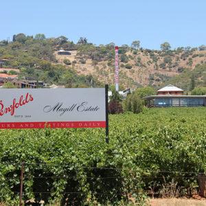 Penfolds Magill Estate