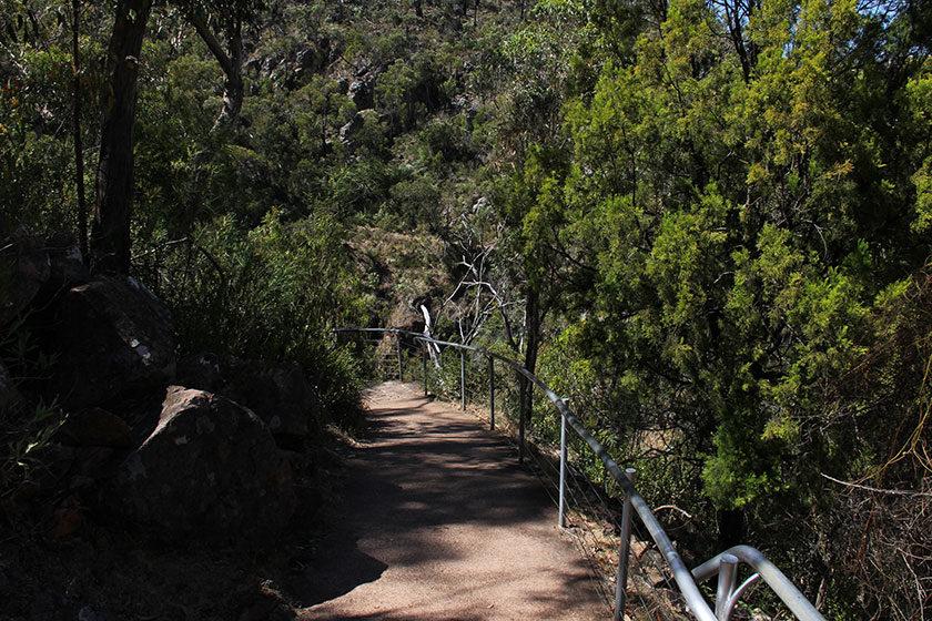 Der Weg zu den MacKenzie Falls