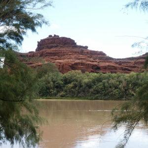 Der Colorado River