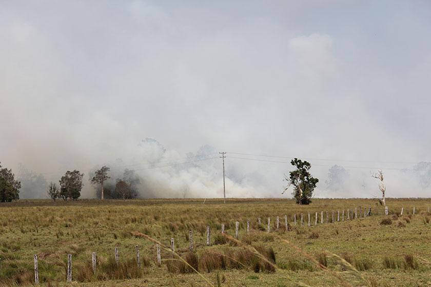Buschfeuer auf dem Weg nach Emerald Beach