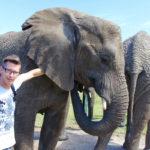 Hautnah mit den Elefanten im Knysna Elephant Park