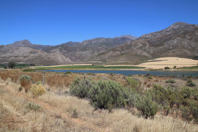 Cape Winelands District