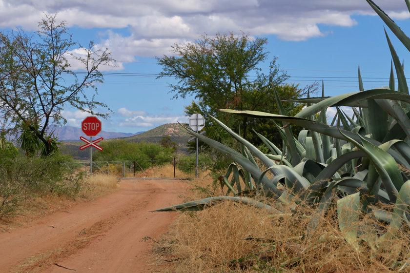 In der kleinen Karoo