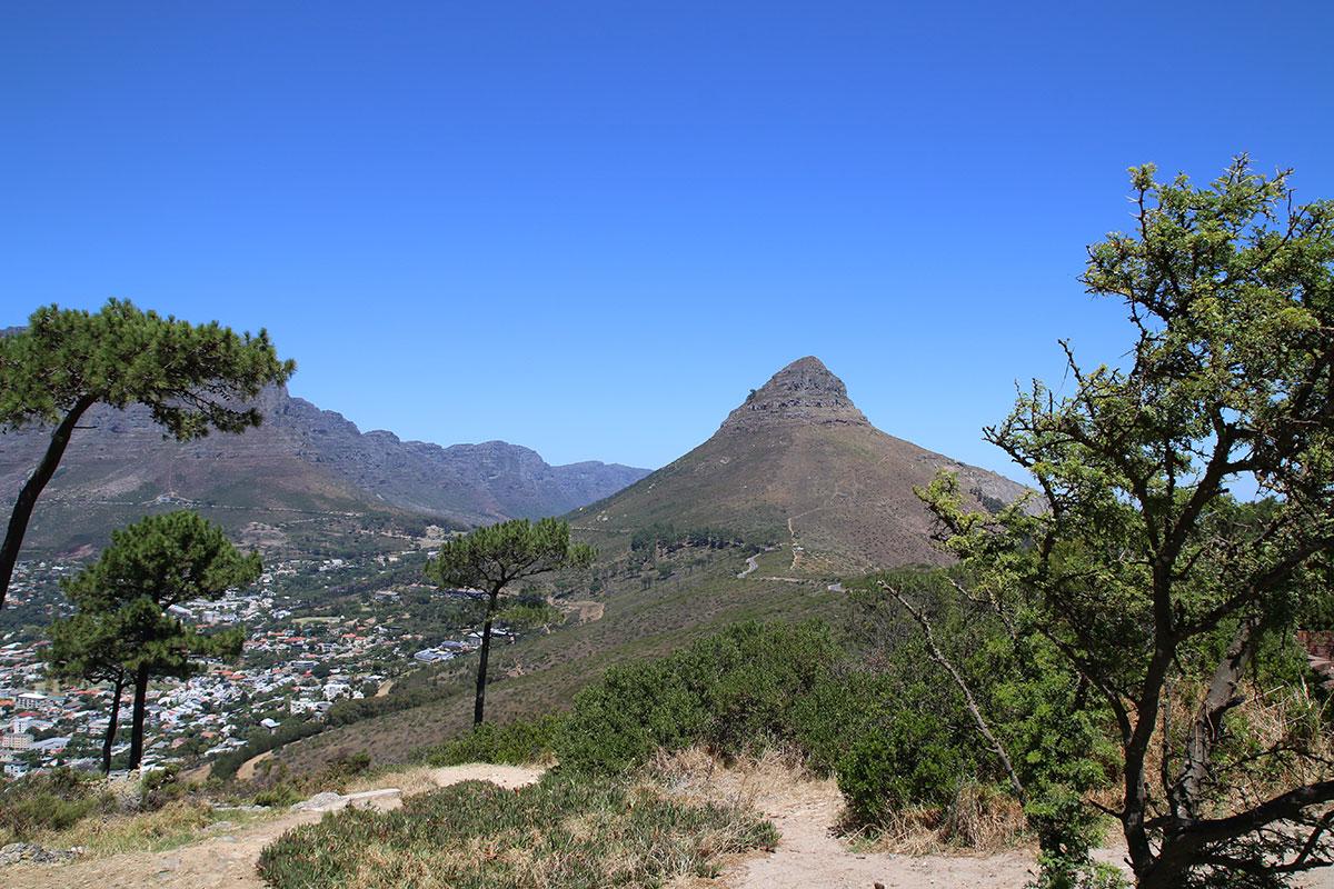 Der Lions Head vom Signal Hill aus gesehen