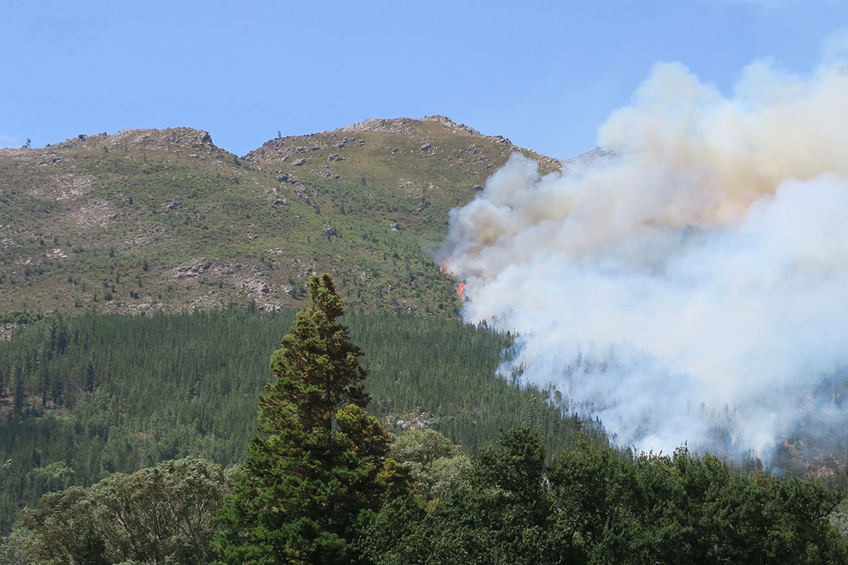 Feuer in Franschhoek