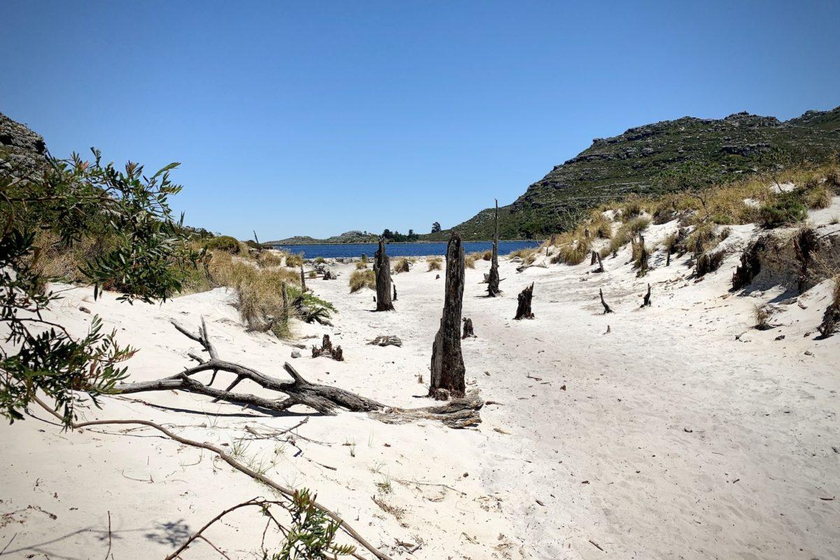 Weißer Sand auf dem Tafelberg
