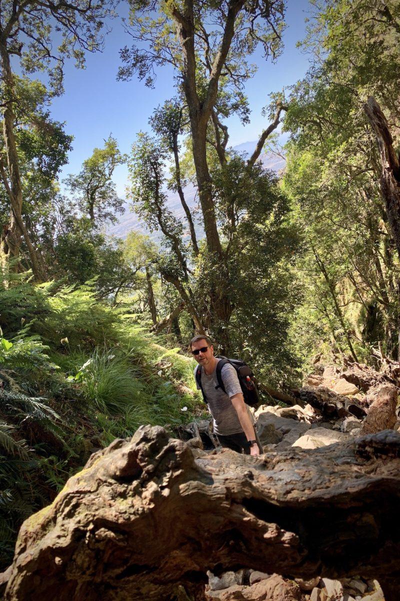 Durch den Skeleton Gorge auf den Tafelberg