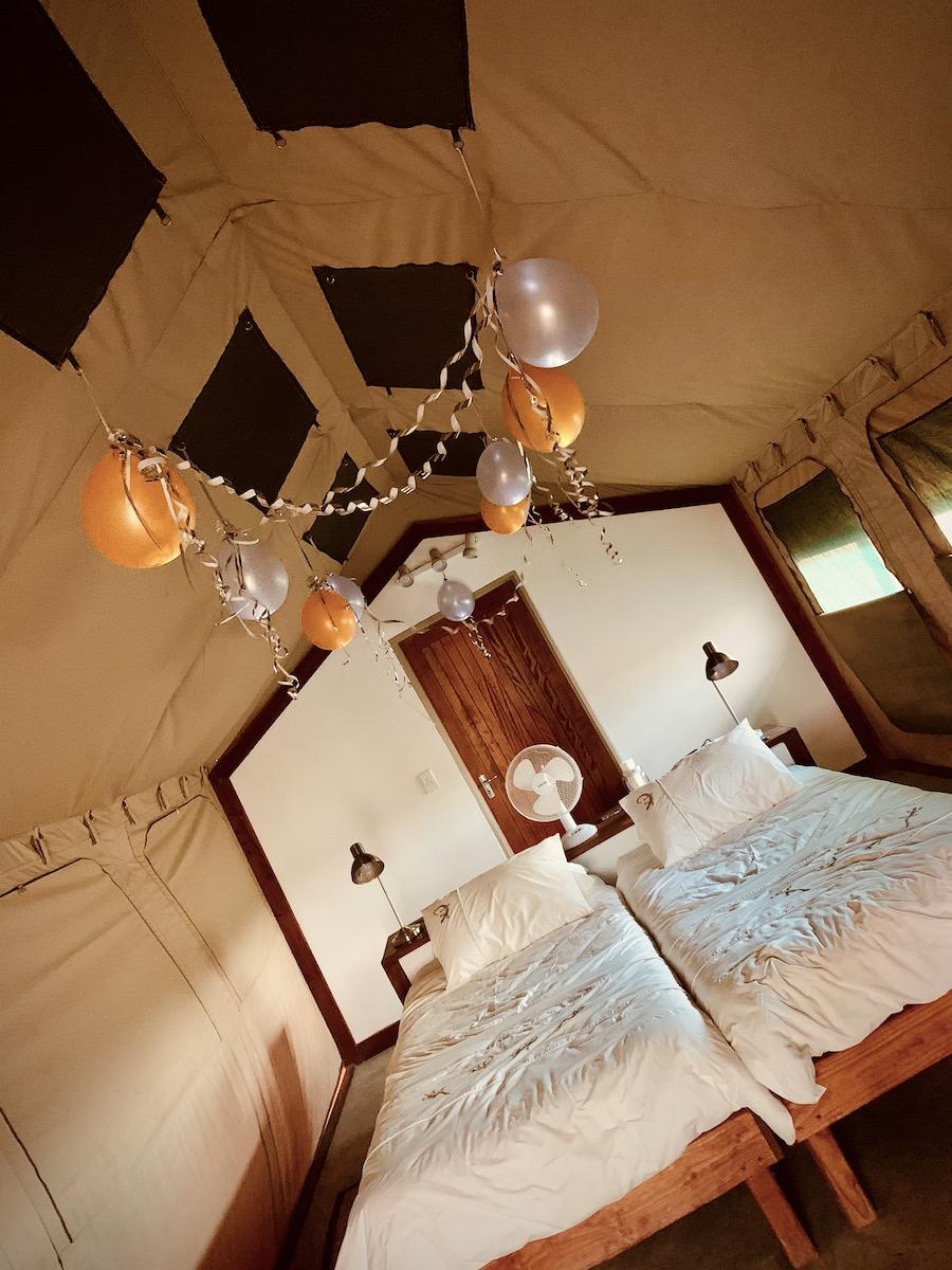Unser für Silvester dekoriertes Safari-Zelt